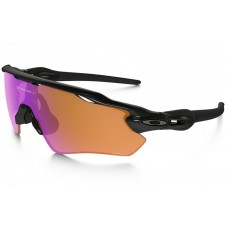 Oakley Radar Ev Replica
